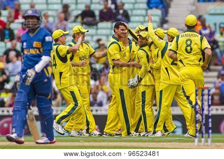 LONDON, ENGLAND - June 17 2013: Australia celebrates taking the wicket of Kumar Sangakkara from the bowling of Clint McKay during the ICC Champions Trophy match between Sri Lanka and Australia.