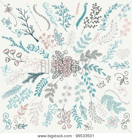 Vector Hand Sketched Rustic Floral Doodle Branches