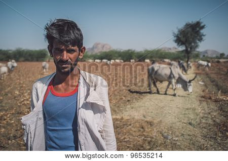GODWAR REGION, INDIA - 14 FEBRUARY 2015: Young Rabari tribesman with no turban stands in field with cattle. Post-processed with grain, texture and colour effect.
