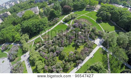 Citizens get rest in Lilac Garden near Dry Fountain at spring sunny day. Aerial view