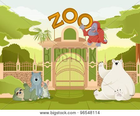 Welcome To Zoo