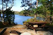 the perfect picnic spot alongside a lake in backwoods maine usa. poster