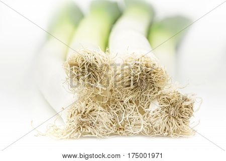 Fresh leek with roots on white background