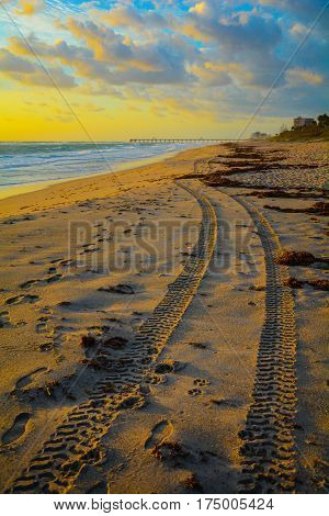 Dune buggy tire tracks on the beach in the early morning with footprints and a pier and buildings in the background