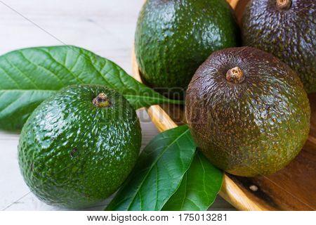 Green fresh avocado from organic avocado plantation - healthy food