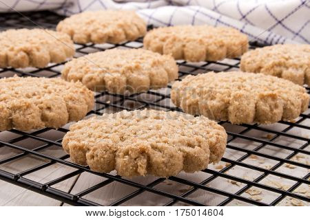homemade oatmeal biscuit on a black cooling rack