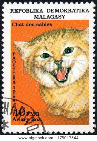 UKRAINE - CIRCA 2017: A stamp printed in Malagasy Madagascar shows Chat des sables cat circa 1986