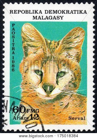 UKRAINE - CIRCA 2017: A stamp printed in Malagasy Madagascar shows Serval circa 1986