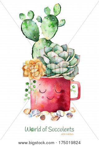 Watercolor handpainted succulent plant and cactus in pot and pebble stones.