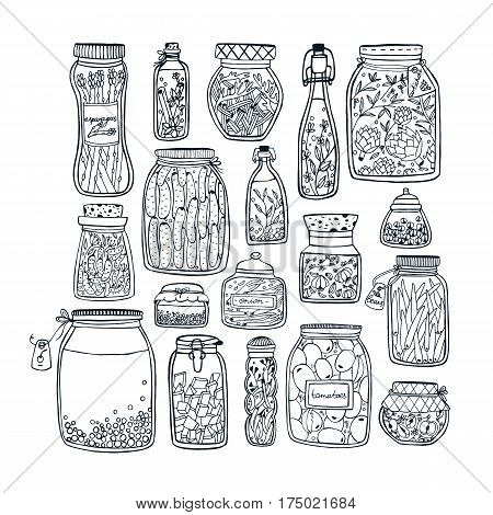 Autumn marinated food. Set of pickled jars with vegetables, fruits, herbs and berries on shelves. Contour Illustration.