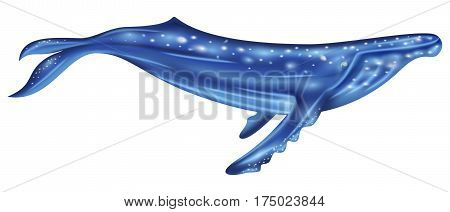 Cartoon style of Blue whale like watercolor. Sea mammal vector illustration.