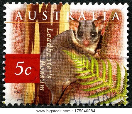 AUSTRALIA - CIRCA 1996: A used postage stamp from Australia depicting an illustration of a Leadbeaters Possum circa 1996.