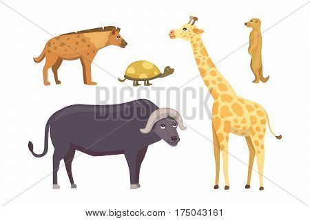 African animals cartoon vector set. elephant, rhino, giraffe, cheetah, zebra, hyena, lion hippo crocodile gorila and outhers safari isolated illustration