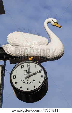 NORWICH UK - JANUARY 2017: A beautiful Swan sculpture perched on a clock outside the Dipples Jewellery store in the historic city of Norwich on 17th January 2017.