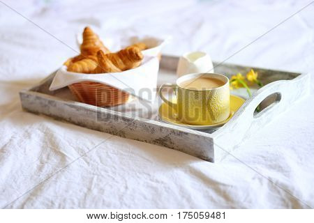 Breakfast in bed. Romantic meal in gray wooden tray with croissants cup of tea and narcissus flowers.