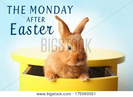 Text THE MONDAY AFTER EASTER and cute bunny sitting in table drawer on blue background