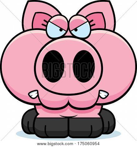Cartoon Angry Pig