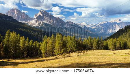 View of meadow Larch wood Le Tofane Gruppe and Hohe Gaisl Alps Dolomites mountains Italy