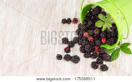 Blackberries And Raspberries Overflowing In A Green Bucket