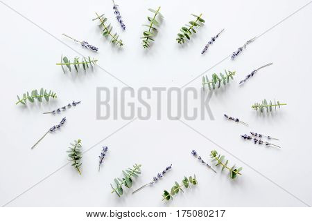 Floral pattern with lavander and eucalyptus for spring design on white background top view mockup