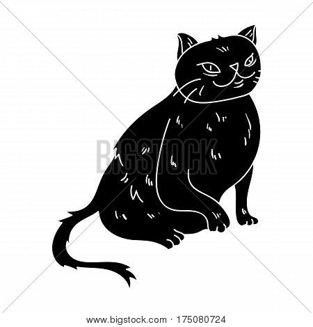 York Chocolate icon in black design isolated on white background. Cat breeds symbol stock vector illustration.