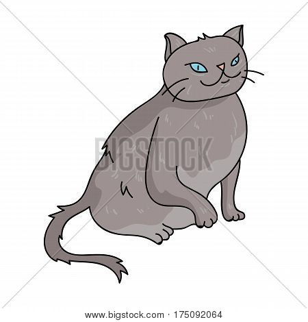 York Chocolate icon in cartoon design isolated on white background. Cat breeds symbol stock vector illustration.