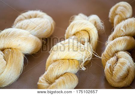 Close up of the yellow cocoons made by the silkworm