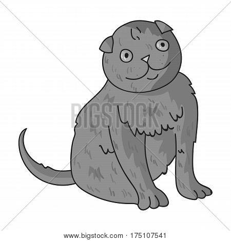 Scottish Fold icon in monochrome design isolated on white background. Cat breeds symbol stock vector illustration.