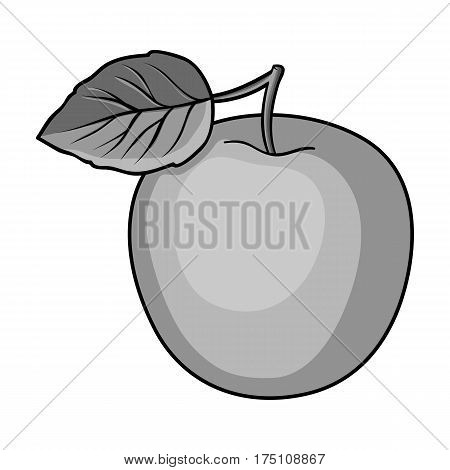 Green Apple with leaf.Proper diet for diabetes.Diabetes single icon in monochrome style vector symbol stock web illustration.
