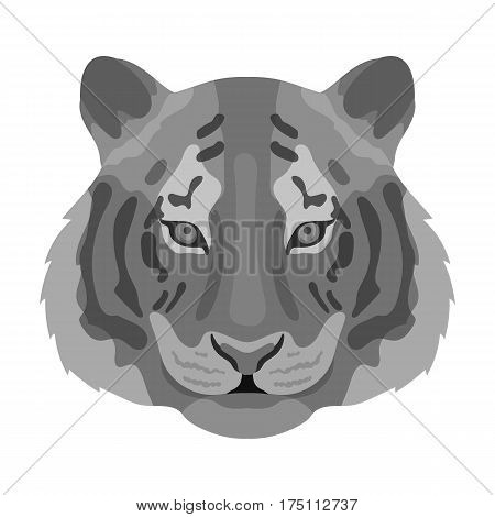 Tiger icon in monochrome design isolated on white background. Realistic animals symbol stock vector illustration.