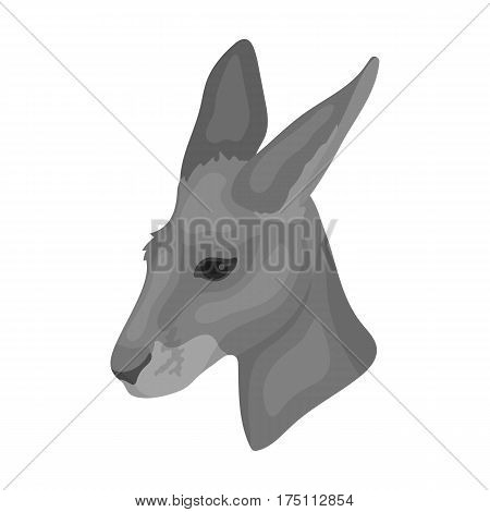 Kangaroo icon in monochrome design isolated on white background. Realistic animals symbol stock vector illustration.