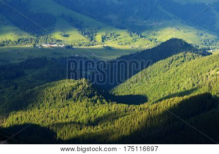Summer landscape in green tones. Settlement in a mountain valley. Sunny evening. Dzembronya village, Carpathian, Ukraine, Europe