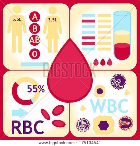 Blood Count Test