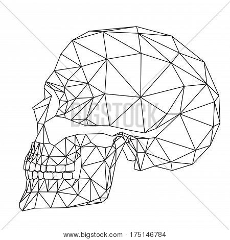 Side view of Human skull, cranium, geometric black lines, polygons ant triangles art on white background, vector illustration