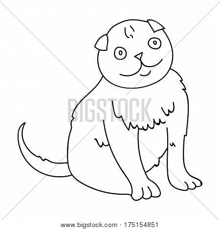 Scottish Fold icon in outline design isolated on white background. Cat breeds symbol stock vector illustration.