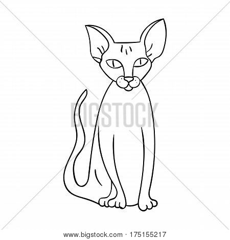 Peterbald icon in outline design isolated on white background. Cat breeds symbol stock vector illustration.