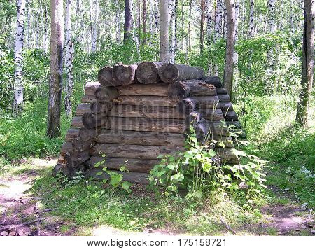 Evenk burial in the form of a deaf log. The Evenk settlement in the pine forest. Lake Baikal, Russia