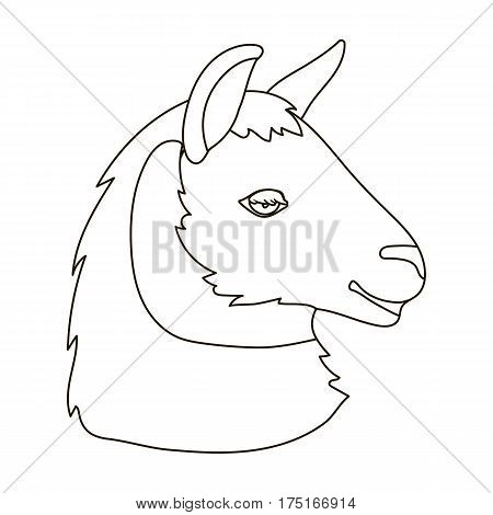 Lama icon in outline design isolated on white background. Realistic animals symbol stock vector illustration.