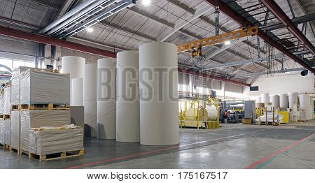 Rolls of paper for further processing. Factory making paper.