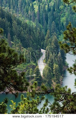 View of road in forest by lake from Mineral Ridge National Recreation Trail in Idaho near Coeur d'Alene lake