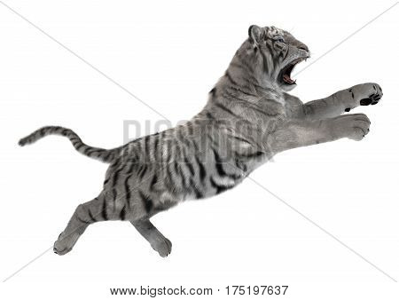 3D rendering of a white tiger jumping isolated on white background