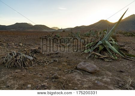 Andalusian countryside. Special landscape: sea and mountains in the national park Cabo de Gata at sunrise