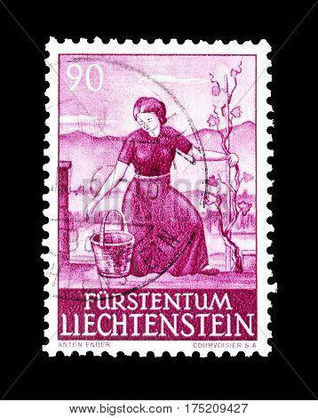 LIECHTENSTEIN - CIRCA 1961 : Cancelled postage stamp printed by Liechtenstein, that shows Agriculture.