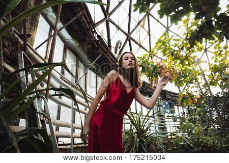View from below of woman in red dress which posing in greenhouse