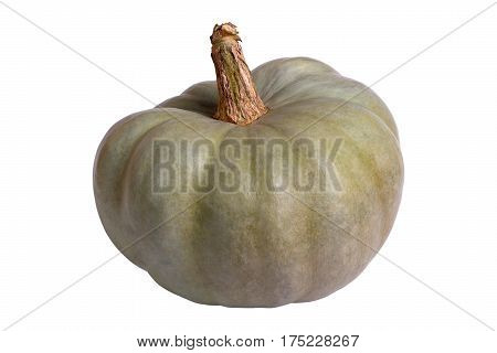 The green pumpkin isolated on white background