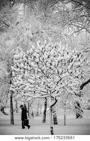 Winter walk in the city. 05.02.2015. Bila Tserkva.
