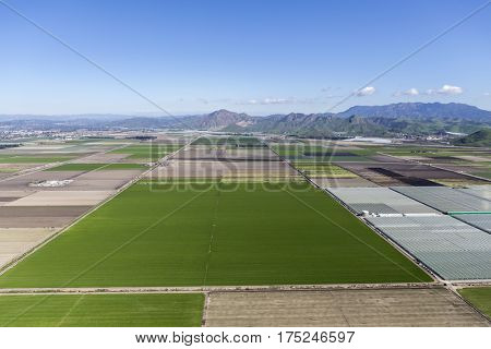 Aerial view of farm fields and Santa Monica Mountains Parks near Camarillo in Ventura County, California.
