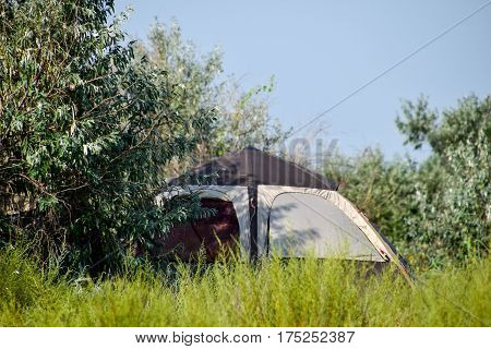 Tourist Tent Under A Tree. Tourist Camping. Multi-tent