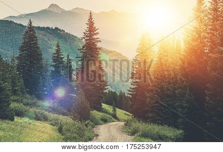 Sunny Mountain Countryside Road. Gravel Road in the Scenic Forest and Mountain Landscape.