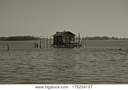 An old fishing  shack on stilts is found out in the water.(black and white)